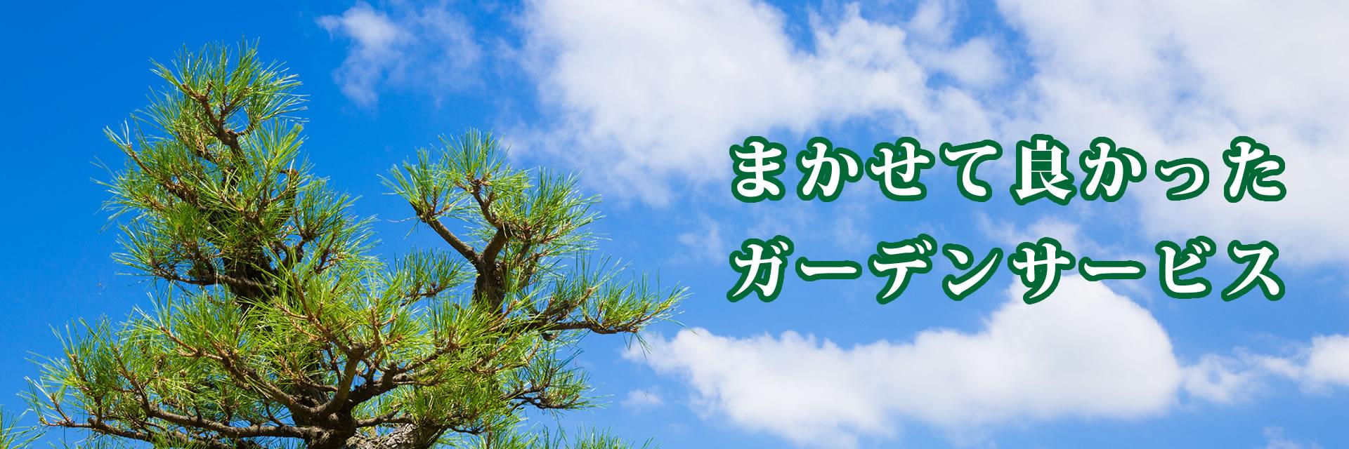 株式会社みまもりジャパン