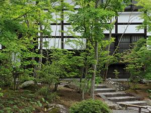 ガーデンサービス|植木の剪定